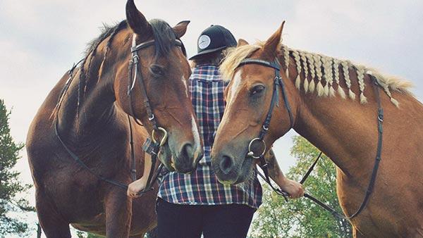 ungdom i hvb-hem med hästar