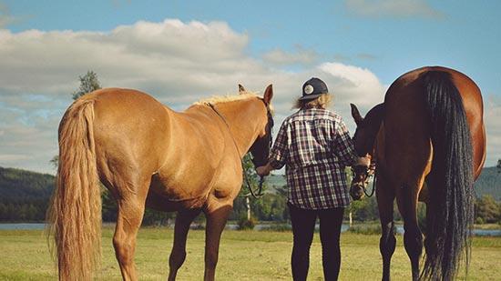 ungdom och två hästar